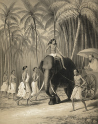 Route de Colombo a Kandy (Ceylan) Mai 1841. [with an elephant carriage etc.]
